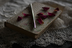 Vintage Vibes (Captured Heart) Tags: book oldbook vintage antique rosepetals lace silverpen