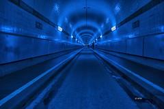 Blueport 2017 *02* (hph46) Tags: alterelbtunnel hamburg deutschland germany blueport blau blue beleuchtung elbe tunnel sony alpha7r canonef247014lisusm