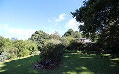 389 Playfords Road, Comboyne NSW