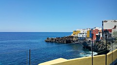 View of the ocean (Linda DV) Tags: lindadevolder 2017 canaryislands canarias spain europe geotagged nature fauna zoo animalpark samsung smartphone galaxy note4 ribbet