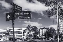 CArlota (Oxkar G) Tags: nikon d200 exterior city ciudad lente manual blanco street calle negro noir blanc blackwhite monocromo gente 35mm18 santiago chile