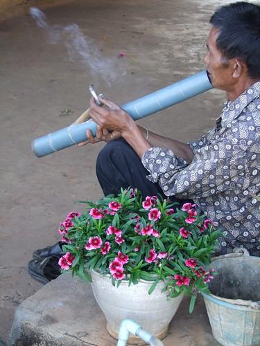 mae salong - thailande 82