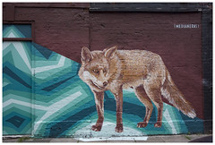Fox Street Art (theimagebusiness) Tags: theimagebusinesscouk theimagebusiness photography travel tourism touristattraction creative city citycentre cityculture environment street streetart painting posters graffiti abandoned location london eastlondon eastend
