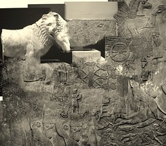 Egyptian and Assyrian (Chris Draper) Tags: lion egypt egyptian collage assyrian museum britishmuseum carving stone texture archaeology archaeological carved monochrome statue sculpture