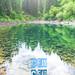 Clean, clear, living lake