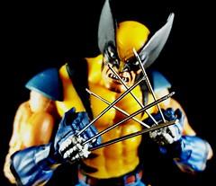 taste some adamantium (aka_patch) Tags: logan wolverine xmen toybiz marvellegends mutant