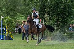 A9903681_s (AndiP66) Tags: springen derby aesch bl baselland 2017 juni june 13august2017 pferd horse schweiz switzerland kantonbaselland cantonofbaselland concours wettbewerb horsejumping springreiten pferdespringen equestrian sports pferdesport sport sony alpha sonyalpha 99markii 99ii 99m2 a99ii ilca99m2 slta99ii sony70400mm f456 sony70400mmf456gssmii sal70400g2 amount andreaspeters