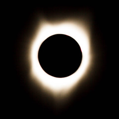 Totality (http://fineartamerica.com/profiles/robert-bales.ht) Tags: eclipse events projects light full natural nature total sun science corona solar black lunar astronomy beautiful image planet space star bright flare white universe energy phenomenon heat moon graphic cosmos sphere sparkle sunlight sunbeam aurora cosmic starlight brightness event shining brilliancy shadow ring scenic scientific phase silhouette solareclipse astrology annular amazing astronomical mysterious glowing glow mystical robertbales idaho square
