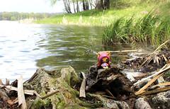 Clawdeen Wolf Minis (eneida_prince) Tags: monsterhigh doll dolls osalina mattel photo photos mh 2017 monsterhigh2017 photoshoot clawdeenwolf werewolf wolf originalghouls clawdeenwolfminis monsterhighminis