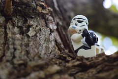 Intimacy (RagingPhotography) Tags: lego star wars imperial galactic empire stormtrooper storm trooper intimacy intimate close up personal deep outdoor outside nature camera photography technology plants tree bark wood greenery bokeh plastic toys toy minifigure minifig figure cute heartwarming adorable ragingphotography