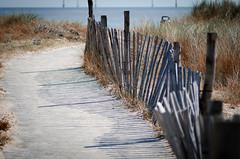 HFF (Philip R Jones) Tags: beach walk board sunny hff fence shadow 100mm shallowdof dry sand grass