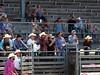 00020032_1 (David W. Burrows) Tags: rodeo cowboys cowgirls horses bulls bullriding children girls boys kids boots saddles bullfighters clowns fun