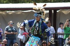 HIAM - Prairie Chicken Dance 2 (D Johnston) Tags: lawrencekansas haskellindiannationsuniversity blue