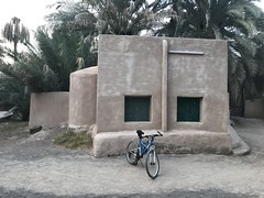 Al Ain Oasis Ride (Patrissimo2017) Tags: bicycle oasis cycling