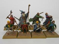 LR1 (Giantnerdguy) Tags: lotr miniatures frodo samwise merry pippin aragorn gandalf gimli boromir no legolas desert painting citadel
