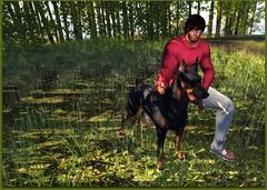 My Bad Dog (carsoncaiben) Tags: boyberry enipose adclothing ahgautumnalhunt2017 adam catwa ikon nomatch labyrinth nivaro
