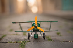 Fly as much as you can! (Nathalie Le Bris) Tags: fly toy volar avión plane avion bokeh