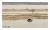 SHF_8246_Ha Noi Red River (Tuan Râu) Tags: 1dmarkiii 14mm 100mm 135mm 1d 1dx 2470mm 2017 50mm 70200mm tuấnrâu2017 canon canon1d canoneos1dmarkiii canoneos1dx hanoi redriver sôngnước sônghồng tuanrau tuan râu httpswwwfacebookcomrautuan71