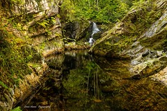 Parkinson Creek (photobydave@gmail.com) Tags: juandefucamarinetrail parkinsoncreek parkinsontrailhead vancouverisland britishcolumbia waterscape landscape geology creek water canada pacificnorthwest juandefuca portrenfrew wilderness forest westcoast rainforest