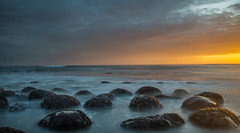 The Dusk Disappearance (dezzouk) Tags: bowlingballbeach california sunset boulders seaweed pointarena gualala mendocino schoonergulch cliffs dusk