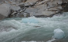 Ice from the glacier, Nigardsbreen, Norway (Williams5603) Tags: norway nationalpark jostedalsbreen water ice sognefjord glacier nigardsbreen