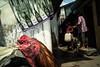 * (Sakulchai Sikitikul) Tags: street snap streetphotography summicron songkhla sony a7s chicken 35mm leica thailand flash islamic muslim