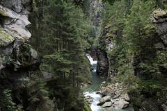 Rofflaschlucht - Roflaschlucht ( Schlucht Canyon gorge gola ) des Hinterrhein ( Rhein Fluss river Bergbach Bach creek ) in den Bündner Alpen - Alps bei Andeer - Bärenburg im Schams im Kanton Graubünden - Grischun der Schweiz (chrchr_75) Tags: christoph hurni chriguhurnibluemailch chrchr chrchr75 chrigu schweiz suisse switzerland svizzera suissa swiss kanton graubünden kantongraubünden kantongrischun grischun albumgraubünden august 2017 chriguhurni albumzzz201708august hurni170808