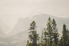 Haze | Grand Teton National Park (chadmmiles) Tags: d3200 nikon west travel adventurer roadtrip beautiful trees mountains grandteton nationalpark