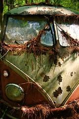 Dead Bug (tvdflickr) Tags: oldcarcity whitegeorgia junkyard salvage vehicles old volkswagen bus volkswagenbus van georgia photography rust decay nikon df nikondf photobytomdriggers thomasdriggersphotography oldcarcitywhitegeorgia vw