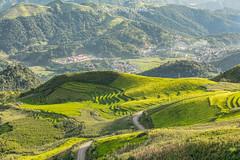 _29A0170.0817.Phiêng Ban.Bắc Yên.Sơn La.Vietnam. (hoanglongphoto) Tags: asia asian vietnam northvietnam northwestvietnam landscape scenery vietnamlandscape viernamscenery vietnamscene mountainouslandscape mountainous hill hillside flankmountain afternoon sunny sunlight sunnyafternoon sunnyweather road pass canon canoneos5dsr tâybắc sơnla bắcyên phiêngban tàxùa phongcảnh phongcảnhvùngnúi phongcảnhtâybắc buổichiều nắng nắngchiều sườnnúi sườnđồi valley thunglũng đườngđi đèo roadpics conđường canonef70200mmf28lisiiusmlens