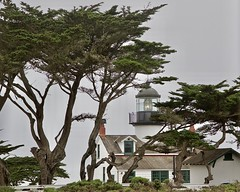 Point Pinos Lighthouse (grendel7469) Tags: pointpinoslighthouse lighthouse pointpinos pacificgrove golf ca