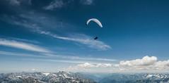 Zeno über den Alpen