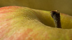 An apple a day keeps the doctor away. (Arnd Gräfe) Tags: apple macromondays apfel stayinghealthy