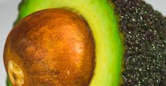 planet A (johndifool) Tags: avocado macromondays stayinghealthy green macro