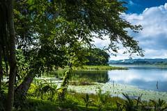 Paisaje junto al lago (allabar8769) Tags: agua guatemala lago paisaje vegetación ngc nwn