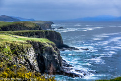 Dingle Peninsula Ireland-17 (Yasu Torigoe) Tags: viewfromr559nearfaminecottagesalongtheatlanticoceanon