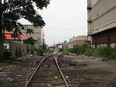 Abandoned PRR spur, South Philadelphia (tehshadowbat) Tags: southphilly southphiladelphia tracks abandoned disused railroad trains rail walkingtherails abandonedtracks overgrown