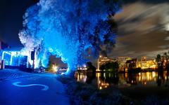 The Blue and the Yellow Side of the Danube (guenther_haas) Tags: digitalarttaiwan ulm neuulm donau danube blue blau baum tree fluss gelb yellow olympus omd em5 walimex fisheye 75mm pro donaucenter wilhelmsburg jahnufer abriss baulücke ufer donauufer