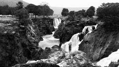 Hogenakkal Falls, Tamilnadu (lokesh.venkatashiah) Tags: fall waterfalls tamilnadu karnataka kaveririver