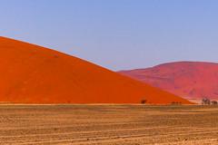 P1020910 (Seb_Jan) Tags: namibie namibia afrique africa afrika summer 2017 road trip roadtrip travel adventure holiday nature explore lumix wildlife safari picoftheday photooftheday dune desert naukluft sossusvlei red sand wonder merveille sesriem
