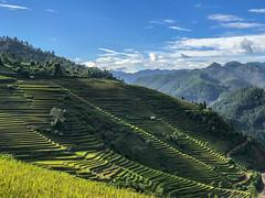 36486966943_eeaeb81a73_o (thanhhai_1989_gtvt) Tags: lapántẩn yênbái vietnam vn