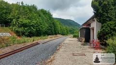 Bahnhof Niederbronn les Bains