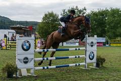 A9903667_s (AndiP66) Tags: springen derby aesch bl baselland 2017 juni june 13august2017 pferd horse schweiz switzerland kantonbaselland cantonofbaselland concours wettbewerb horsejumping springreiten pferdespringen equestrian sports pferdesport sport sony alpha sonyalpha 99markii 99ii 99m2 a99ii ilca99m2 slta99ii sony70400mm f456 sony70400mmf456gssmii sal70400g2 amount andreaspeters