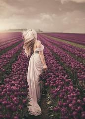~ feeling love ~ (Miss Froggi Photography) Tags: beauty tulips sunset outdoor fieldsoftulips blond longhair