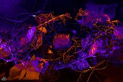 LightPainters United 2017. Teufelsberg (Athalfred DKL) Tags: light painting lightpainting lp lightgraff children darklight dkl lightart art artist frodoalvarez nophotoshop herramientas hlp frododkl frodo berlín unitedlightpainters united lightpainters aurora movement auroramovement teufelsberg camera rotation kinetic photography rotación