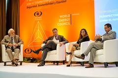 Panel: Perspectivas del Consejo Mundial de Energía sobre el futuro energético de la región.