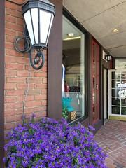 Oakland MD ~ storefront flowers (karma (Karen)) Tags: oakland maryland garrettco downtown flowers windows storefronts doors lights lanterns bricks iphone