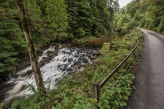 Weir Walk (Click And Pray) Tags: managedbyclickandpraysflickrmanagr forest path track road weir river horizontal scotland landscape argyll stream cairndow kinglaswater forestpathtrackroadweirriverhorizontalscotlandlandscapeargyllstreamcairndowkinglaswatergbr