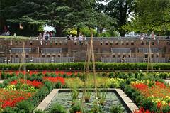 DSC_2367 (Resery) Tags: london hornimanmuseum parks gardens