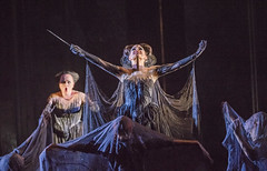 Your Reaction: What did you think of Mozart's <em>Die Zauberflöte</em>?